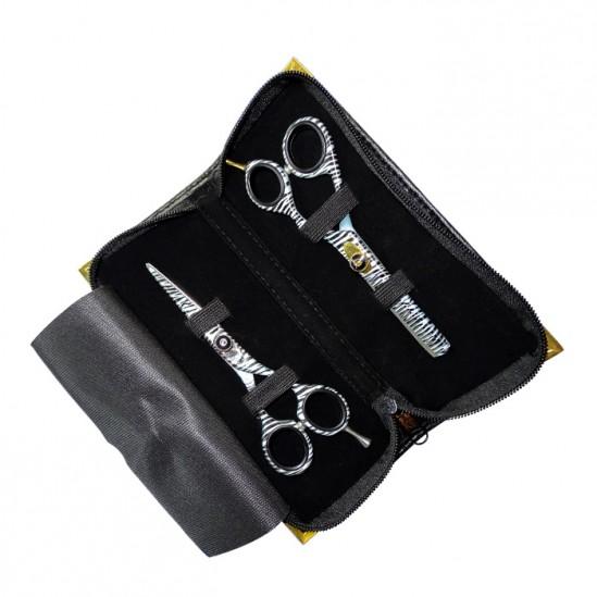Комплект за професионални фризьори модел DS5